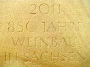 850 Jahre Weinbau in Sachsen