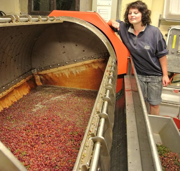 Weinpresse mit Küferin