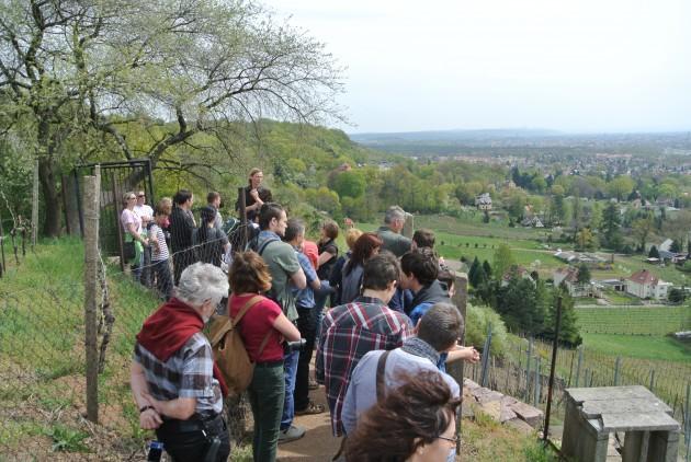Hoch über Radebeul verläuft der Wunderschöne Eggersweg durch unsere Weinberge.